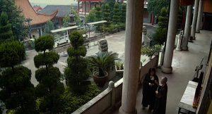 Qing Ting zhi yan